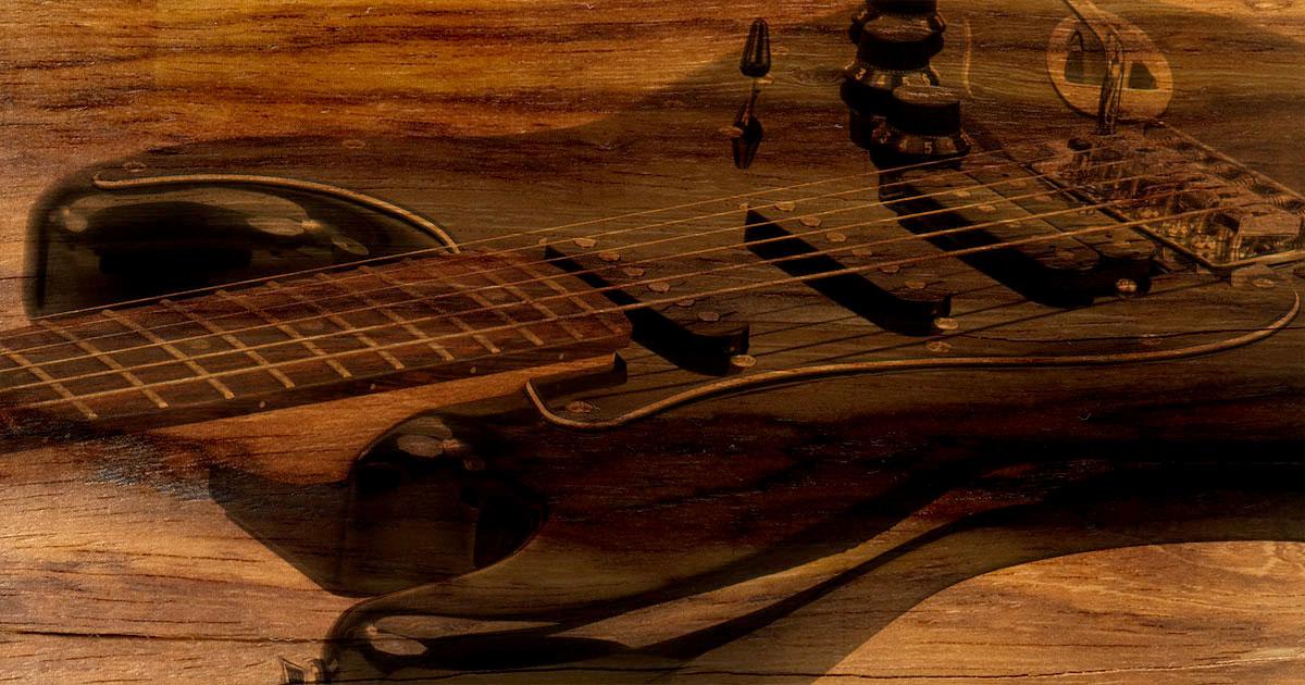 Palisander: Ausnahmeregelung für Musikinstrumente