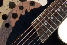 Kirstein Onlineratgeber Gitarrenarten.
