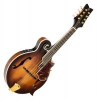 Ortega RMFE100AVO F-Style Mandoline Antique Violin Oil