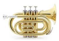 Classic Cantabile Brass TT-500 Bb Pocket Trumpet