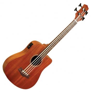 "Gold Tone Micro Bass 23"""