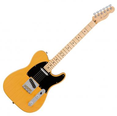 Fender American Pro Tele Ash MN BTB