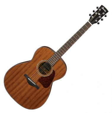 Ibanez AC240-OPN Open Pore Natural