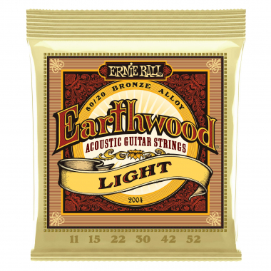 Ernie Ball 2004 Earthwood 80/20 Light