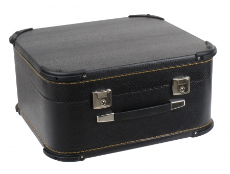 Alpenklang 48 Bass Accordion Case Deluxe