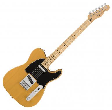 Fender Standard Tele MN BB