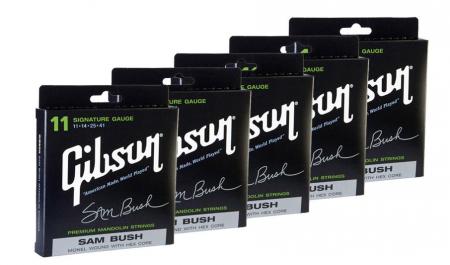 Gibson Sam Bush Signature Mandolin 5er SET