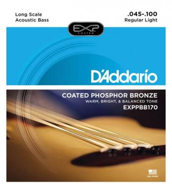 D'Addario EXPPBB170 Regular Light