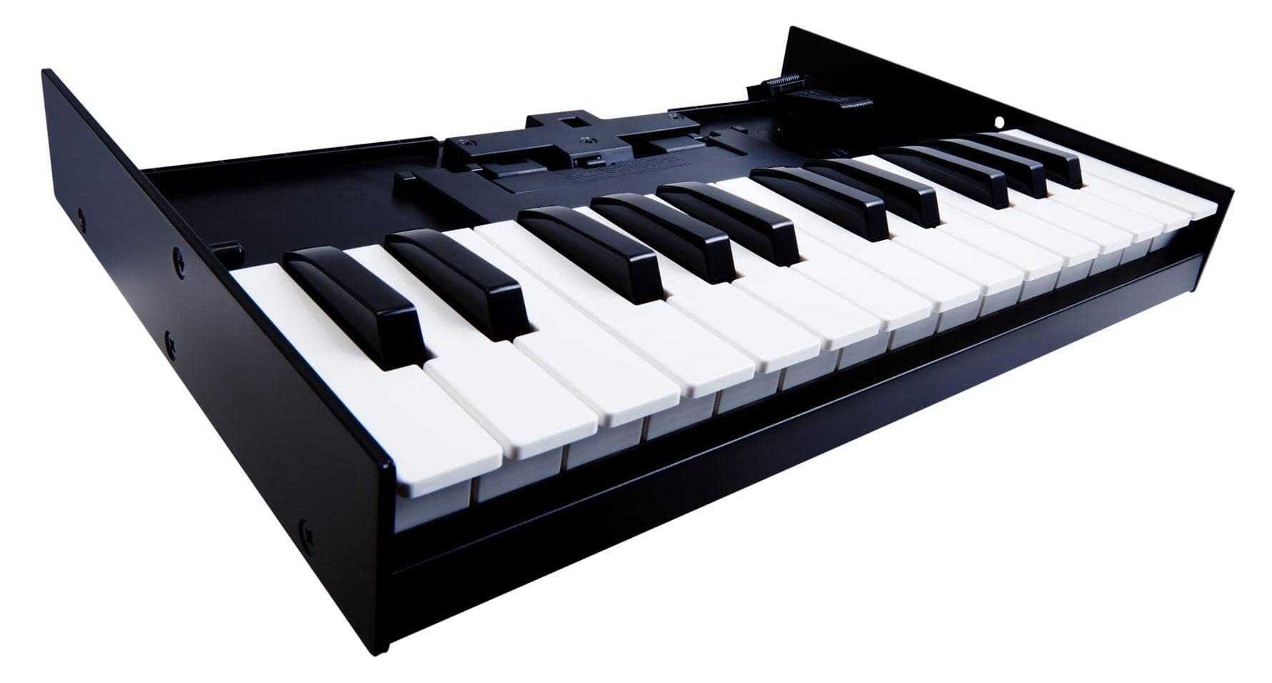 Roland K 25M Tastatur