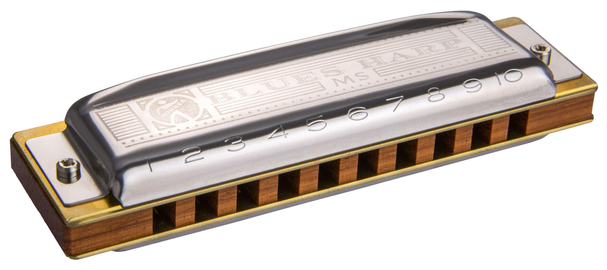 Hohner Blues Harp MS E 20 Stimmzungen