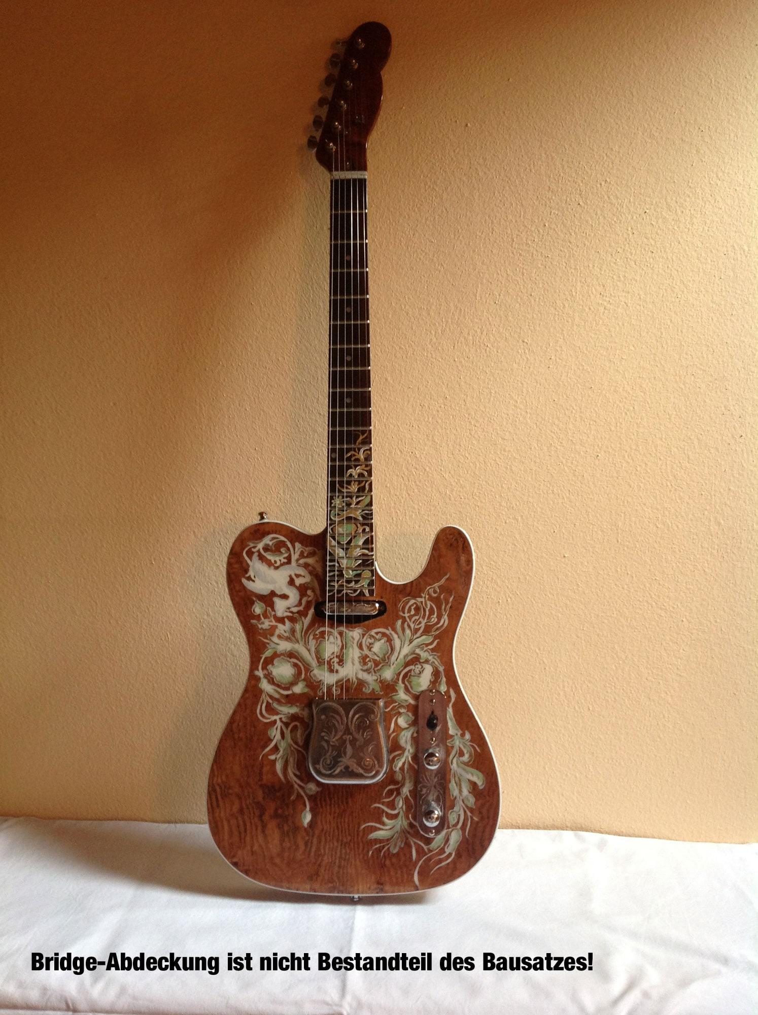rocktile e gitarren bausatz tl style retoure zustand sehr gut. Black Bedroom Furniture Sets. Home Design Ideas