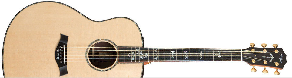 Taylor 918e Westerngitarre